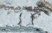 d0013048_1351456.jpg