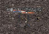 d0013048_1443832.jpg