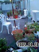 b0026467_2054019.jpg