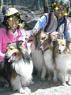 イヌとむめさんと私_c0053520_20302918.jpg