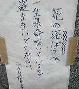 b0018242_18421611.jpg