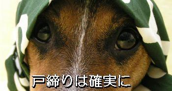 b0002585_18124711.jpg
