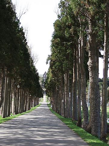 城岱(しろたい)高原を越えて、トラピスト修道院へ…そして_b0053765_2213738.jpg
