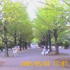 c0001081_1764261.jpg