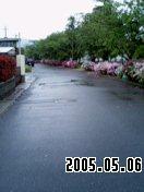b0026467_14345360.jpg