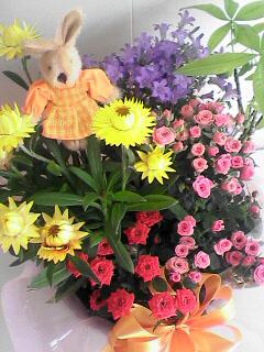 母の日のプレゼント_c0053520_1923384.jpg