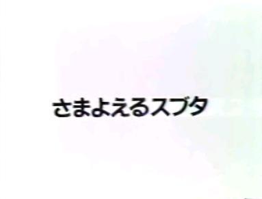 a0012604_2226525.jpg
