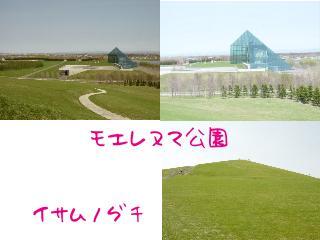 d0020136_1663711.jpg