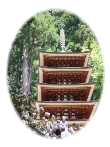 石楠花が美しい室生寺_d0013068_2149579.jpg