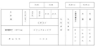 畑・見取り図_a0008185_1648535.jpg