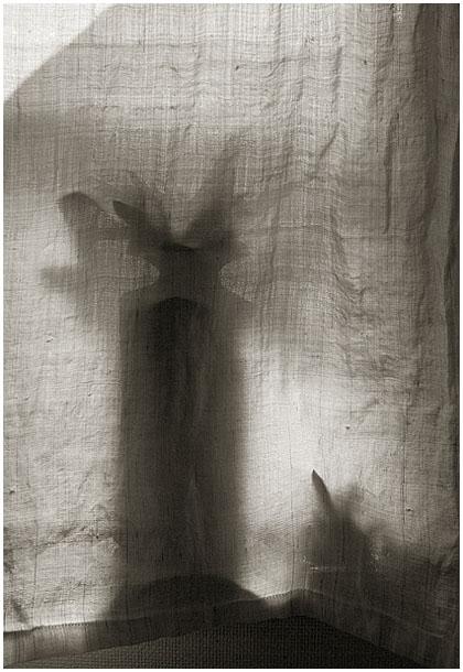 風に揺れるカーテンが_c0002682_18354842.jpg