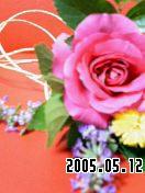 b0026467_4412981.jpg