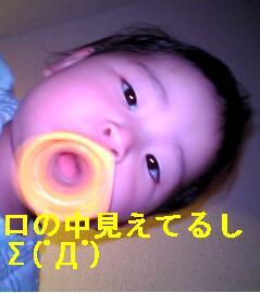d0022107_7361894.jpg