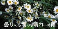 b0065666_20324934.jpg