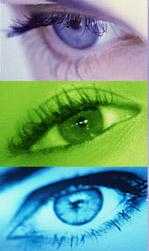 ★お遊びサイト・・生まれてくる子供の目の色の予測と確率_a0028694_9303494.jpg