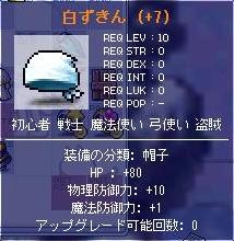c0021035_7371023.jpg