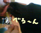 b0004694_1012377.jpg