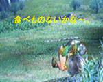 b0011910_17153941.jpg