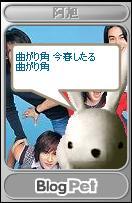 b0012521_5282216.jpg