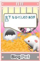 b0012521_5374730.jpg