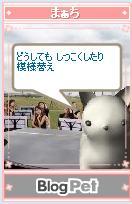 b0012521_5462665.jpg