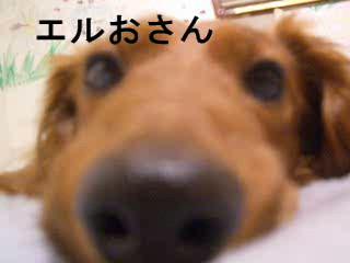 b0046050_15151424.jpg