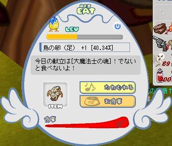 b0069074_1053219.jpg