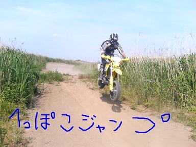 d0023302_2042162.jpg