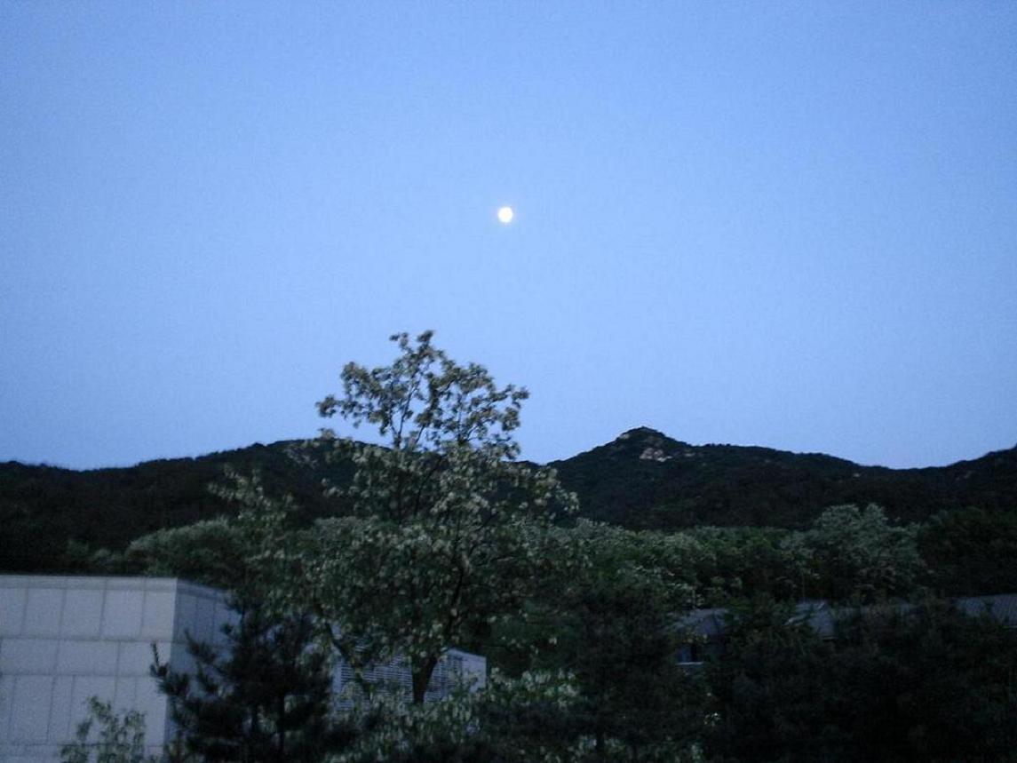 ソウルの夕暮れ~서울의 황혼~_d0012624_21121934.jpg