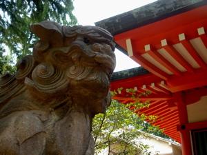 初夏の気配 神楽坂【赤城神社】_a0006744_15355188.jpg