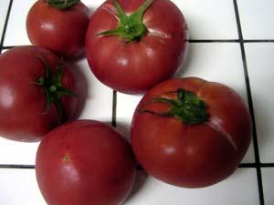 いちごという名のトマト。_a0026127_2239232.jpg