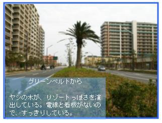 c0039924_1038445.jpg