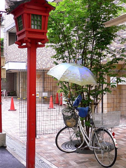 日傘をさして..._c0042324_12422452.jpg