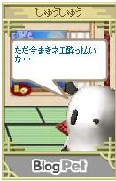 b0012521_13403250.jpg