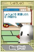 b0012521_13405236.jpg