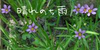 b0065666_0143256.jpg