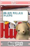 b0012521_1703665.jpg