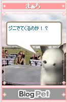 b0012521_1795529.jpg