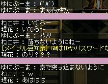 b0039021_12251293.jpg