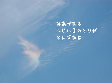 c0008731_53339.jpg
