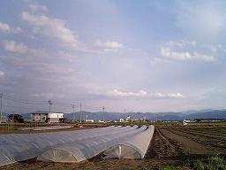 風の記憶_a0014840_21463259.jpg