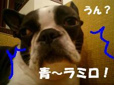 d0041575_19271284.jpg