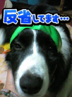 c0012205_13503251.jpg