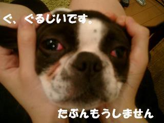 d0041575_18342647.jpg
