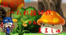 b0049327_169941.jpg