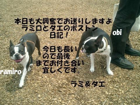 d0041575_2236333.jpg