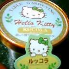 Kitty「ルッコラ」_b0044726_03927100.jpg