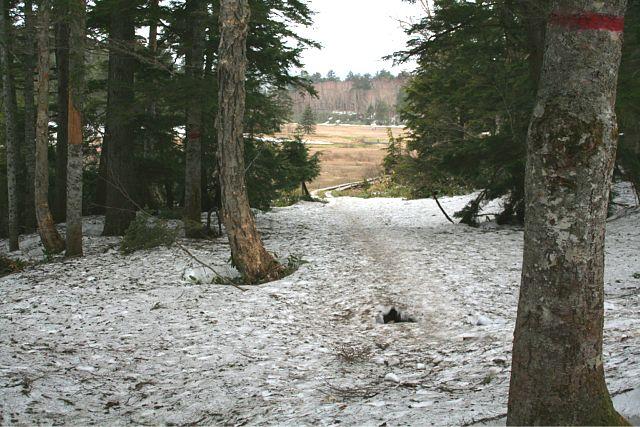 雪深い尾瀬沼_d0012134_231156.jpg