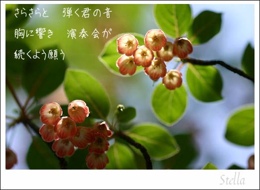 d0015026_994112.jpg