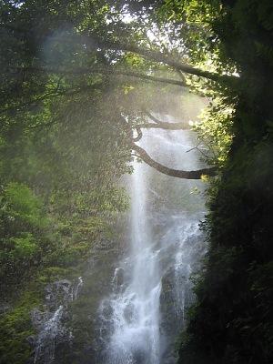 霧のシャワー・・・乙原の滝_c0001578_22344649.jpg